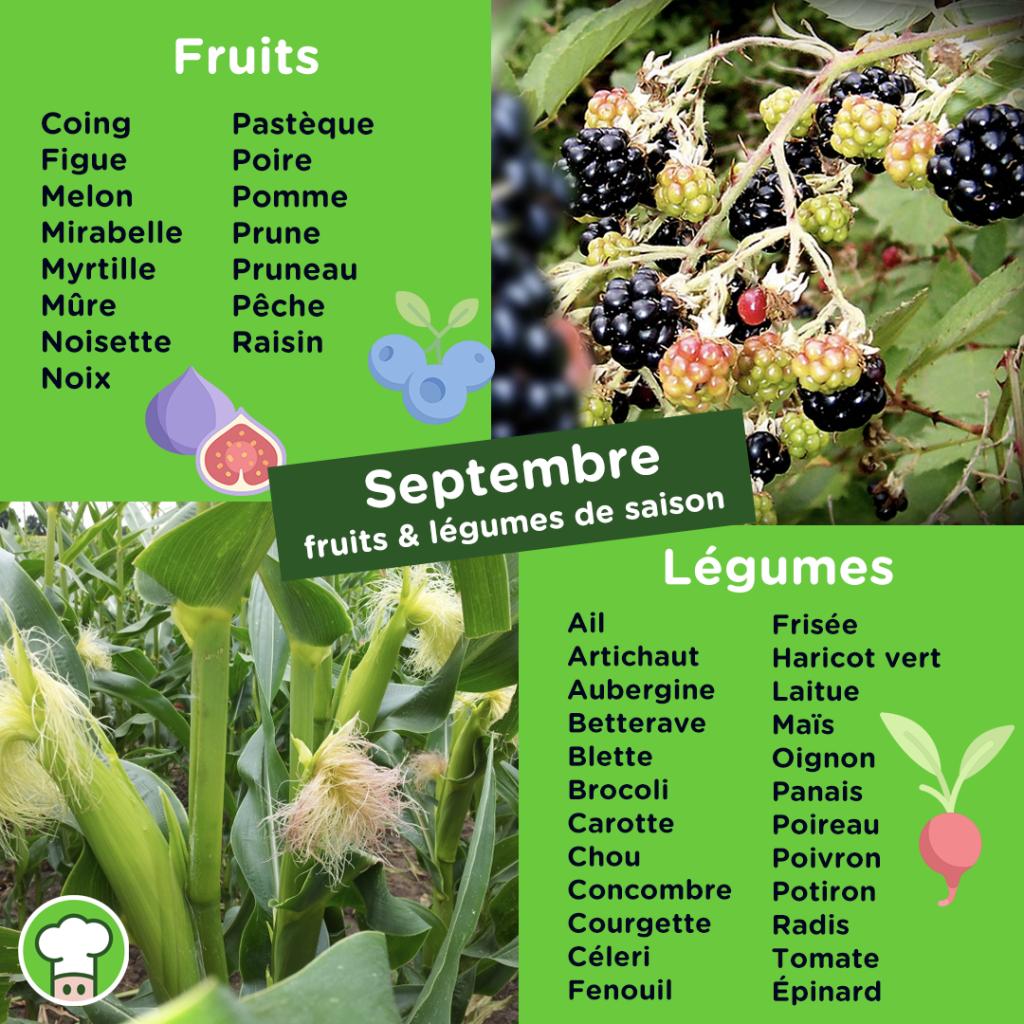 Calendrier des fruits et légumes du mois de Septembre